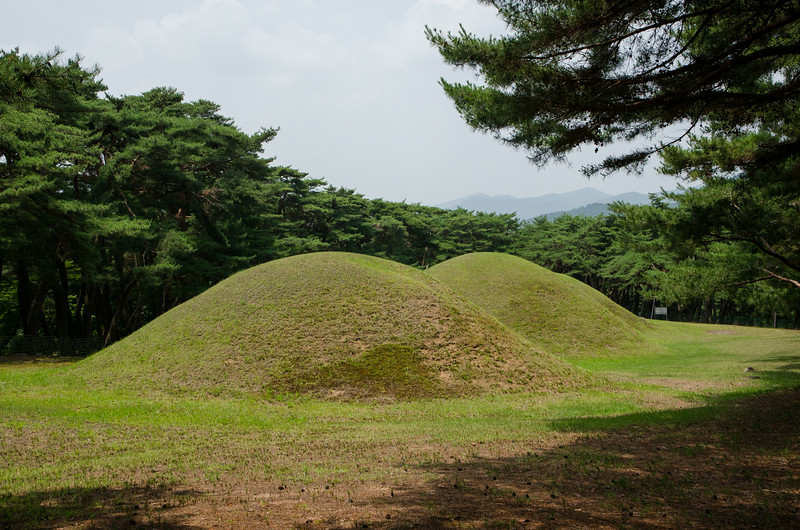 Samneung Royal Tombs