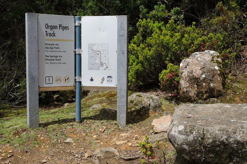 Best Mt Wellington walks - Start of the Organ Pipes track