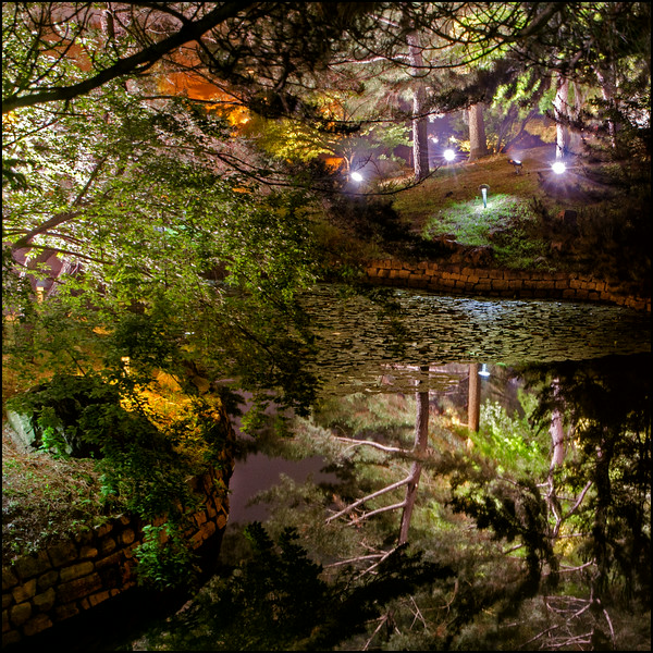 Anapji Pond reflections
