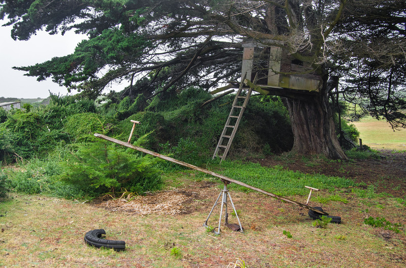 Three Hummock Island - Tree house at The Homestead
